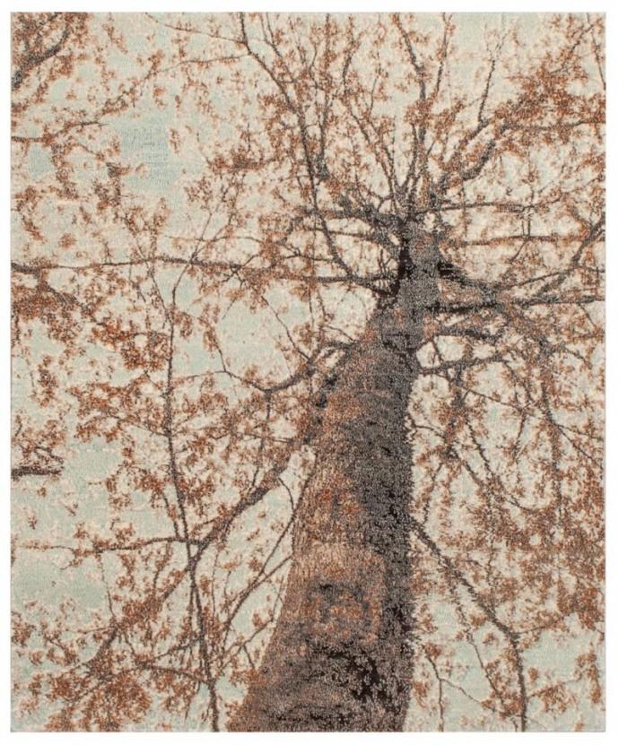 cont_15516 -zoe 244 cm x 305 cm